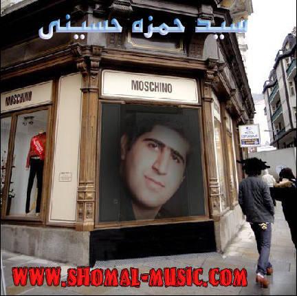 سید حمزه حسینی