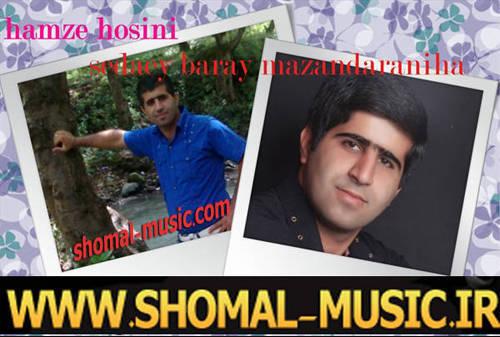 حمزه حسینی,سید حمزه حسینی